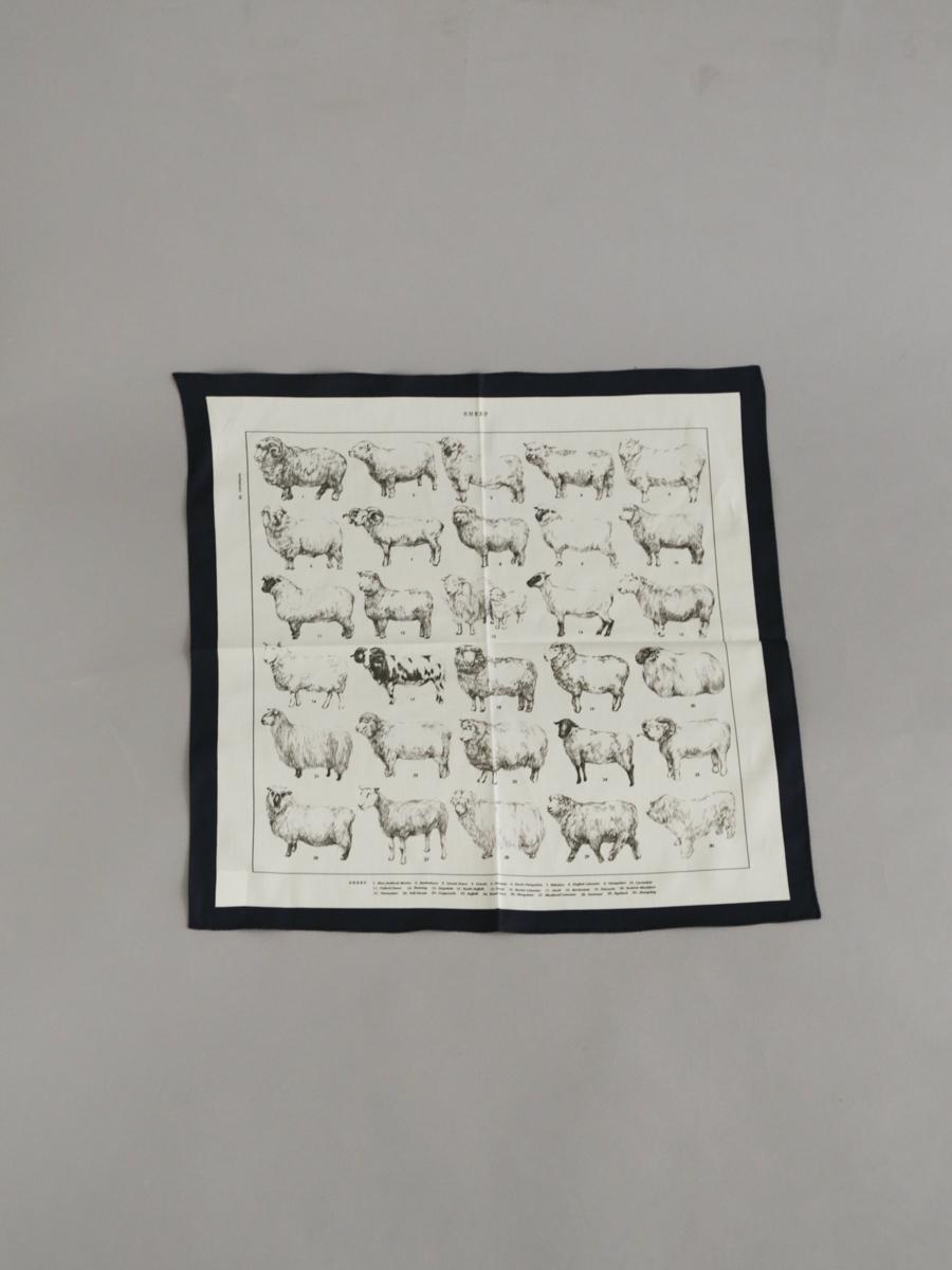 Handkerchiefh